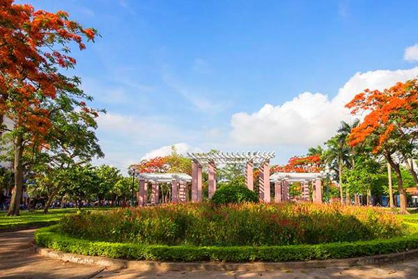 Dàn leo trung tâm thành phố Nam Định