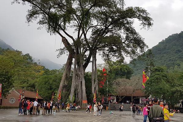 Ngồi chùa nổi tiếng trên dẫy núi Tam Đảo
