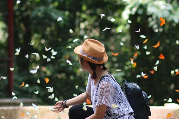 Cúc Phương - Một trong những điểm đến nổi tiếng của Ninh Bình