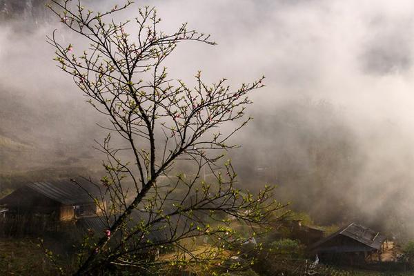Sương sớm tại các bản làng người Phụ nữ HMông