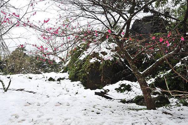 Sa Pa là một trong những địa điểm có tuyết rơi tại Việt Nam